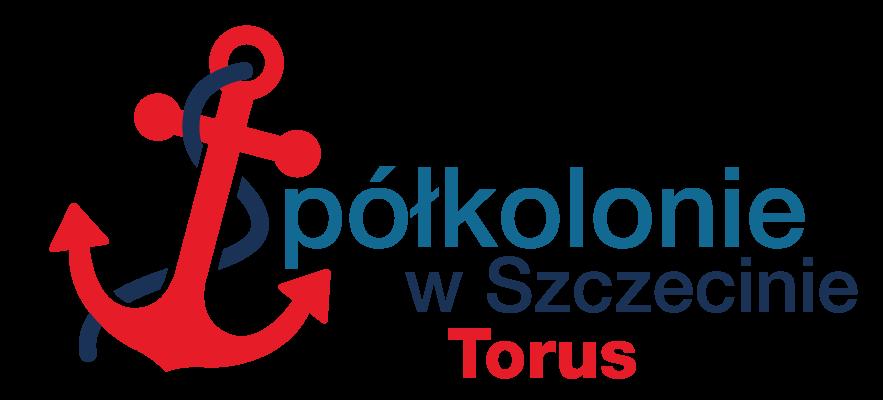 logo-torus883x400